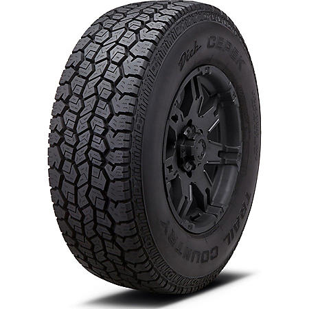Dick Cepek Trail Country - 275/55R20 117T Tire