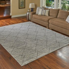 8 x 10 Barcelona Rug (Assorted Colors)