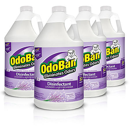 OdoBan Odor Eliminator and Disinfectant Concentrate, Lavender Scent (4 ct.)