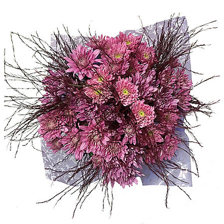 Funky Cushion Pink Poms Bouquet (6 bunches)