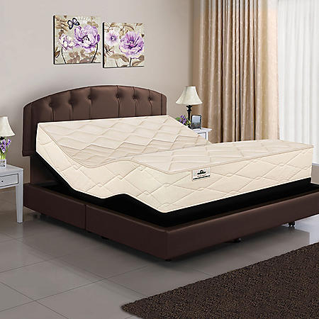 American Sleep Collection Twin XL Organic Elements All Latex Core Mattress and Adjustable Power Base