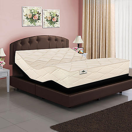 American Sleep Collection Split King Organic Elements 821 Latex Coil Mattress and Adjustable Base