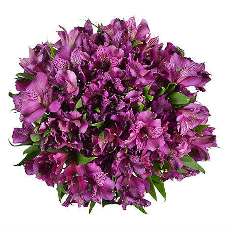 Alstroemeria, Lavender (Choose 45 or 90 stems)