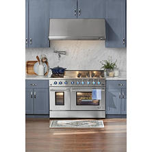 "NXR Elite Stainless-Steel 48"" Gas Range with Convection Oven"