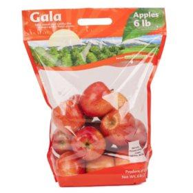 Gala Apples (6 lb.)