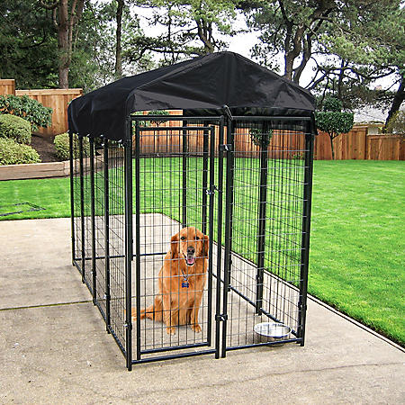 Lucky Dog Uptown 4 x 8 Wire Kennel with Cover