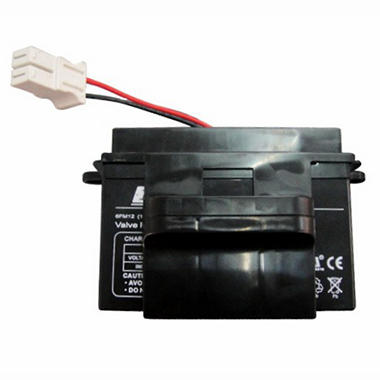 National Products Ltd 12 Volt Battery