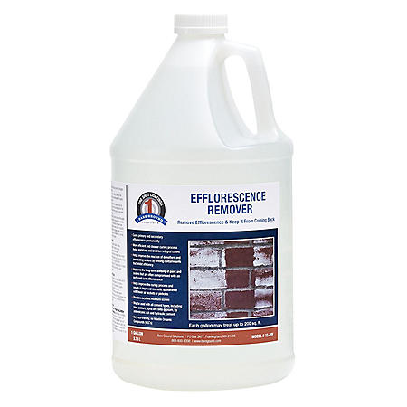 1 Shot Efflorescence Remover by Bare Ground