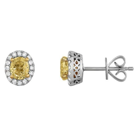 1.00 CT. T.W. Yellow Diamond Earrings in 18K White Gold