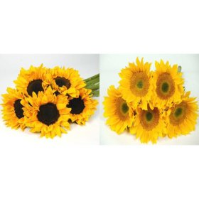 Sunflowers sams club sunflowers yellow 80 stems mightylinksfo
