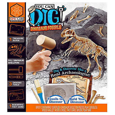 Epic Lab You Can Dig Dinosaur Fossils