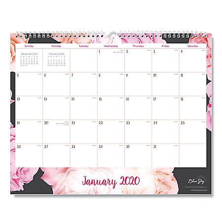 "Blue Sky Joselyn Wall Calendar, 15"" x 12"", 2020"