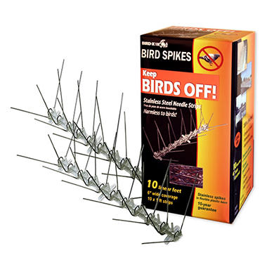 Stainless Bird Spikes - 10' Kit