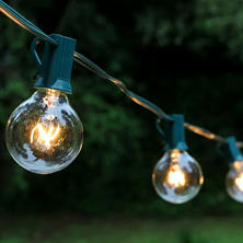 Globe String Lights (25 lights)