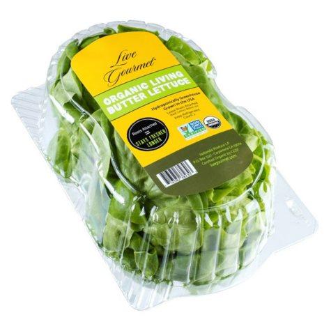 Organic Butter Lettuce