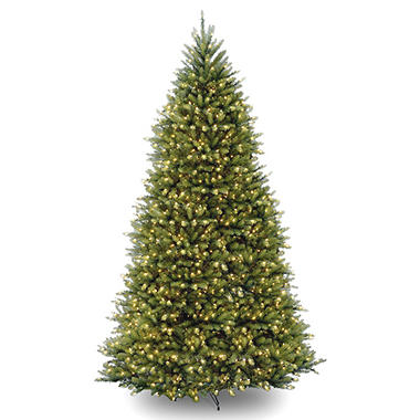national tree company 10 pre lit dunhill fir christmas tree with dual color