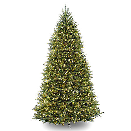 National Tree Company 12' Pre-Lit Dunhill Fir Christmas Tree with Dual-Color LED Lights