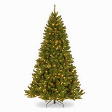 National Tree Company 7.5' North Valley Spruce Tree
