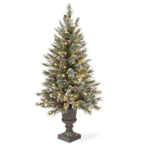 National Tree Company 4' Pre-Lit Glittery Bristle Entrance Topiary Tree