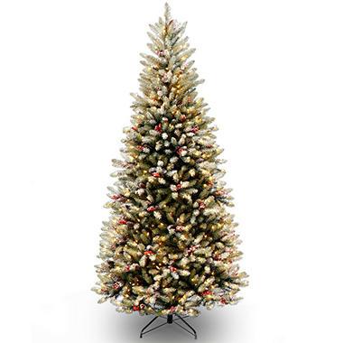 national tree company 75 pre lit dunhill fir slim christmas tree - Pre Lit Slim Christmas Tree