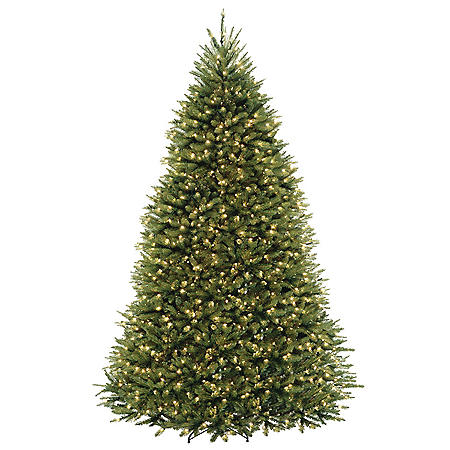 National Tree Company 9' Dunhill Fir Tree