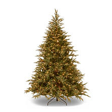National Tree Company 7.5' Frasier Grande Tree