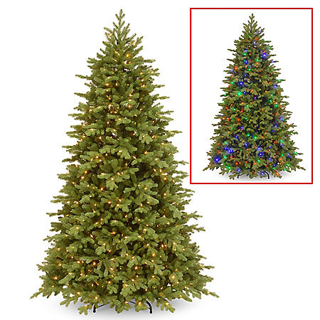National Tree Company 7.5' Pre-Lit Princeton Fraser Fir Christmas Tree with Dual-Color LED Lights