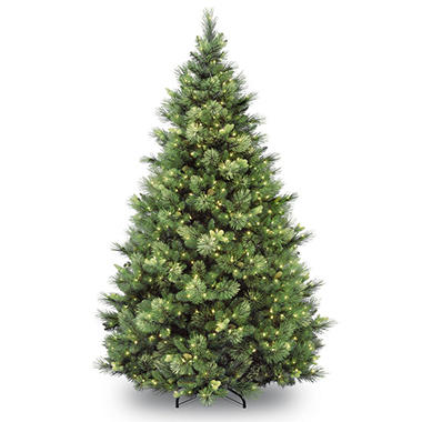 national tree company 9 ft pre lit carolina pine christmas tree with 900 lights - Christmas Tree Company