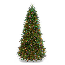 National Tree Company 7.5' Jersey Frasier Tree (600 lights)