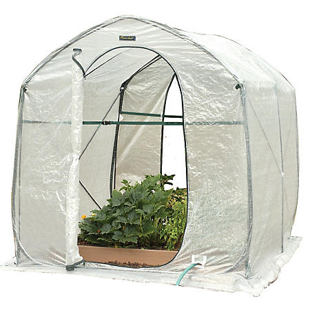 Greenland Gardener Backyard Pop Up Greenhouse - Sam's Club