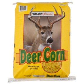 Valley Splendor Deer Corn