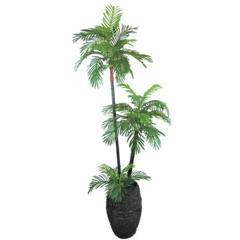 Sago Palm Tree in Oval Basket with Faux Dirt