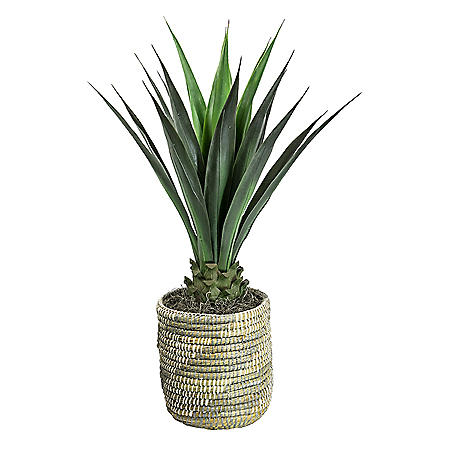 "42"" Faux Agave in Hand Woven White African Basket"