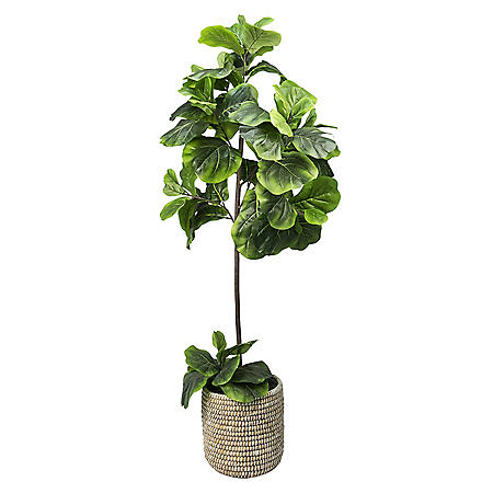 5' Faux Fig Floor Plant
