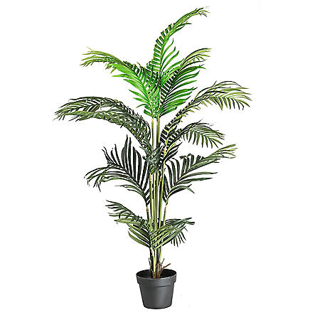 "Faux 56"" Palm Tree in a Pot"
