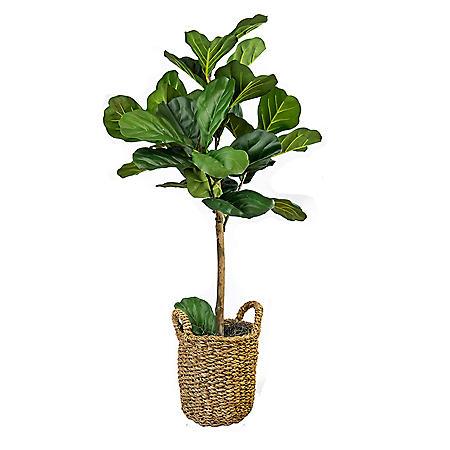 Faux Fig Tree in Basket