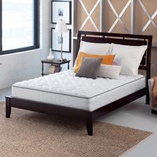 Serta Perfect Sleeper Brindale Twin Firm Mattress