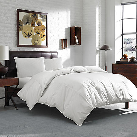 Eddie Bauer 600 Fill Power White Goose Down Comforter (Assorted Sizes)