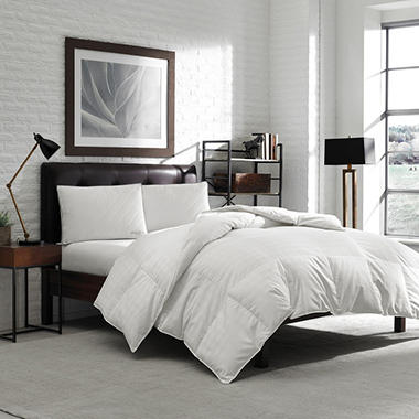 Ed Bauer 650 Fill Year Round Oversized Comforter Orted Sizes