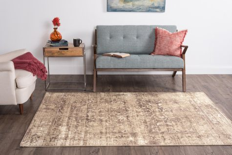 Concept Scroll Area Rug, Brown (Assorted Sizes)
