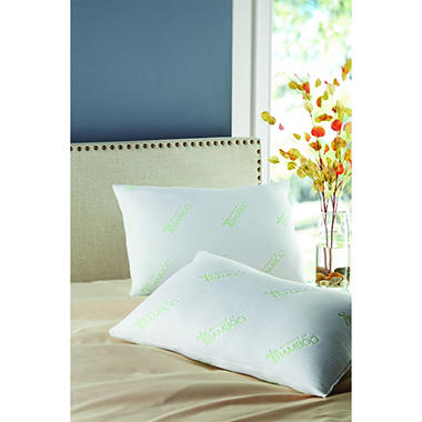 pillows jumbo 2pack top rated