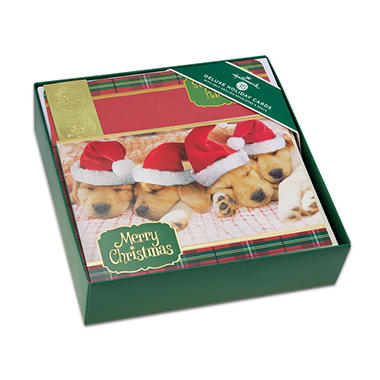 hallmark deluxe elegant boxed christmas cards sleeping pups - Deluxe Christmas Cards