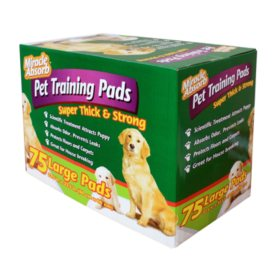 Miracle Absorb Pet Training Pads, Large (75 ct.)