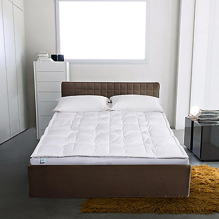 Martha Stewart 233 Thread Count 3'' White Down Top Featherbed (Assorted Sizes)