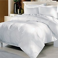 Elle Home 500 Thread Count European White Goose Down Comforter Orted Sizes