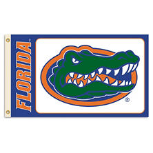 NCAA Florida Gators 3' x 5' Flag with Pole Mount Kit