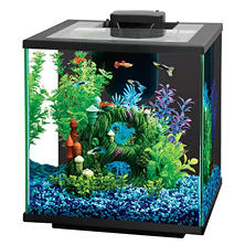 Island 7.5-Gallon Glass Aquarium Kit