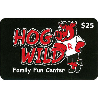 Hogwild Family Fun Center - 2 x $25 for $40