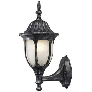Charcoal Silver Outdoor Wall Mounted Light Fixture