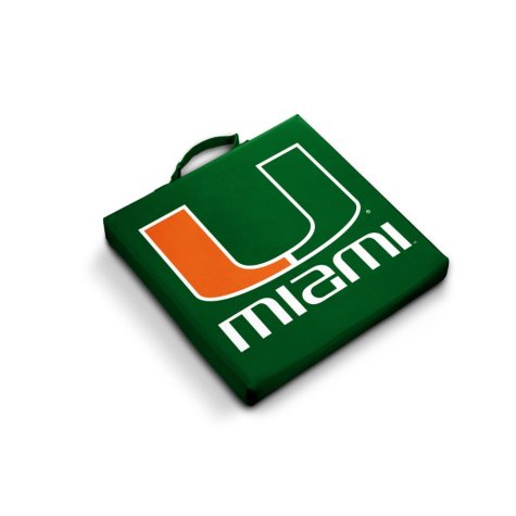 Miami Stadium Cushion